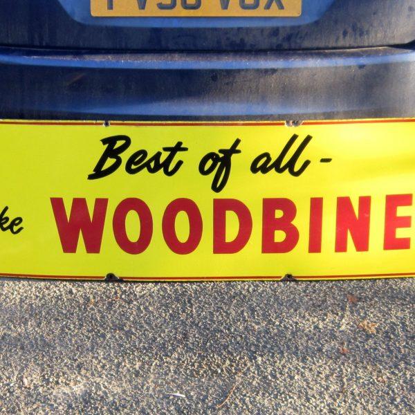 woody 001